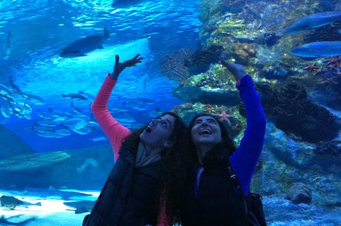 antalya-aquarium-with-a-short-city-tour-and-visit-to-lara-waterfall-in-alanya-211791